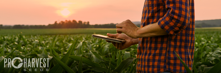 Get a ProHarvest Seeds line of credit through First Mid Bank & Trust